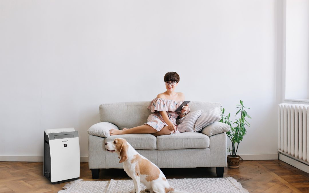 A new star in the family of Sharp air purifiers. Meet the KI-G75EU-W!